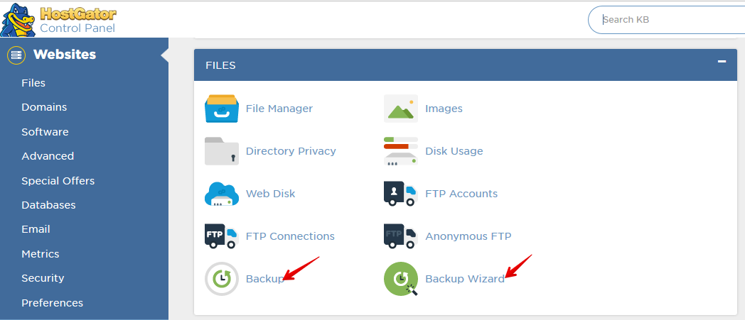 cPanel Backup Option: