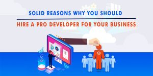 Solid Reasons Why You Should Hire A Pro Developer For Your Business